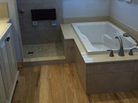 Tub-Shower Renovation